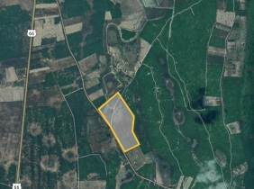 Land for sell at Banteay Srei, Siem Reap