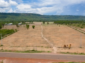 Land Closed to Kulen Mountain for Sale - Siem Reap