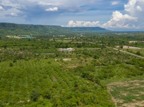 Land for Sale closed to Kulen Mountain - Siem Reap