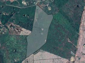 Land for sale about 16Ha- Mango farm