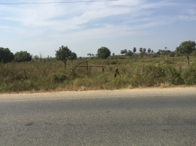 Land​ for sale in a hurry