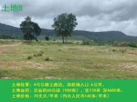 4 km from the airport next to Highway 4, 20 US dollars per square meter for sale