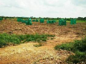 Land for Sale  / $80000