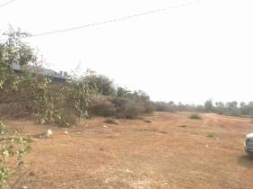 Land for Sale in Samrong Tong / $525000