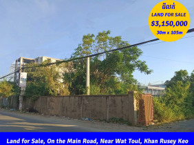 Land for Sale, On main road, Near Wat Toul, Khan Rusey Keo