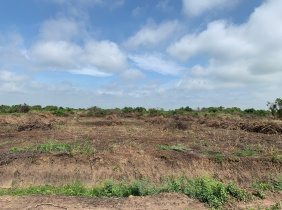 Future investment land for sale with a suitable price