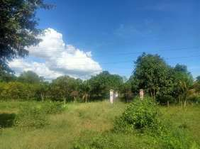 Land for sale along Highway 4 is 9,600 square meters, and the road surface of Linma is 120 meters wide