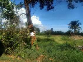 Land for sale on Route 4, 330,000