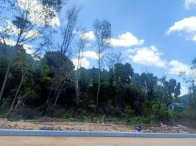 West Beach French beach land for sale, 41 hectares (divided for sale)