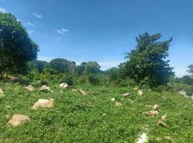 Land for sale near French beach in Westport, 2 hectares, great location