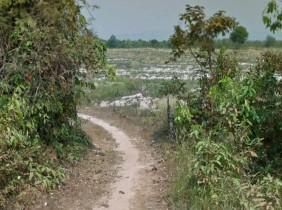 Siem Reap Banteay Srei Land Sell $9/㎡