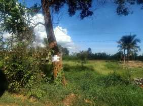 16140㎡ land on the side of Highway 4 for sale, 115$/m², high cost performance