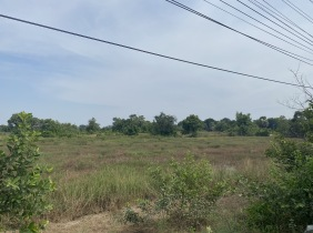Land for sale in Dangkor