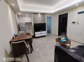 100% true: Prince Central Plaza serviced apartment rental formal 1 bedroom 1 living room 65㎡ $500/month