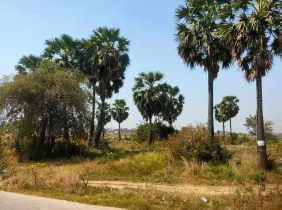 The beautiful land for rent on the 2nd Ring Road in Meanchey District, Phnom Penh can be used as a long-term investment and the price