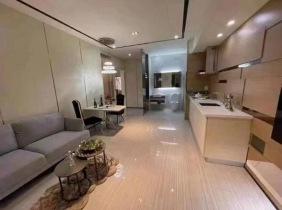 金边市桑园区万景岗1分区 土地带建筑出售(BKK1) 永久产权 594m² 3564000$