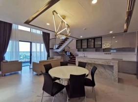 公寓 出租 百色河分区 4居室 260m² 4800$/月