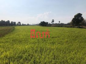 Siem Reap Puok Land for  Sale : 60840$